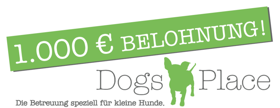 dogs place belohnung 1