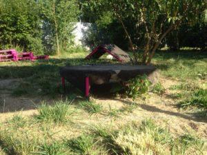 gruener aussenbereich fuer hunde bei der hundebetreuung dogs place in koeln