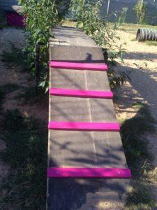 holzrampe mit pinken stufen auf dem gelaende von dogs place in koeln